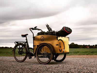 Seaside Bike Gold